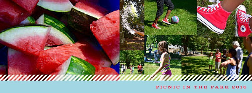 Picnic in the Park 2016